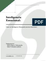 Inteligencia Emocional Ejer