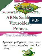 particulas-subvirales