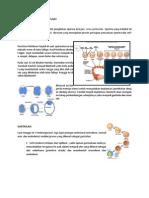 Embriologi SSP