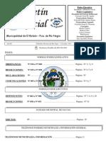 Boletín Oficial Nº 31