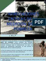 Modelos Criticas Medicion de La Pobreza