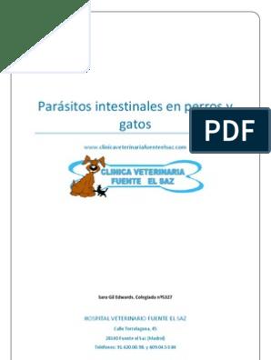 parasitos intestinales en perros y gatos pdf