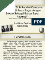 biobriket