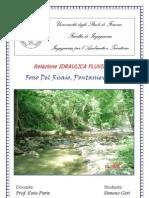 Relazione Idraulica Fluviale I.hec-RAS
