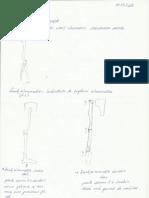 Curs 1 Anatomie