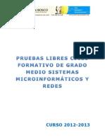 criterios de calificación Pruebas Libres SMR