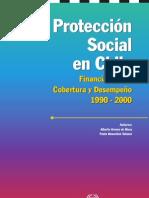 Protecc Soc Chile 1990 2000 OIt