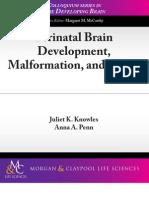 Perinatal Brain Development, Malformation and Injury