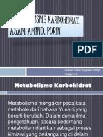 Metabolisme Karbohidrat, Asam Amino, Purin