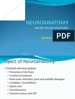 Neuroanatomy Cns 2013