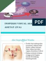 Mini Project Iva Test