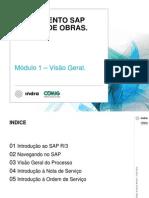 treinamentoSGO_modulo1