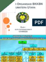 Struktur Organisasi BKKBN di Sumatera Utara ppt.pptx