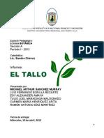 Informe Exposición EL TALLO2.pdf