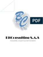 BITCONSULTING S.a.S - Plan de Negocios - Informe Final