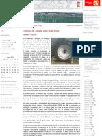 Cultivo de cebola - Rega por aspersão através de Pivot _ Traxco S.A