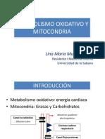 Mitocondria y Corazon