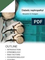 nefropati diabetik