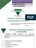 comportamento organiz e mudança