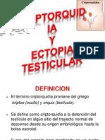 Malformacion Del Aparato Genital