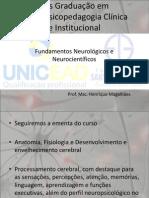 Fundamentos Neurologicos e Neurocientificos Plataforma (1)