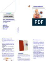 Triptico - Sistema Respiratorio-2