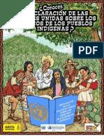 DECLARACION DERECHOS PUEBLOS ORIGINARIOS.pdf