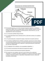 Farmacologia Del Sistemas Respiratori1