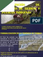 FORMALIZACIÓN DE TENENCIAS DE TIERRAS Y PUEBLOS INDÍGENAS 2