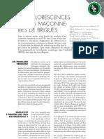 Efflorecence Sur Maconneries de Briques - CSTC - BE