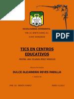 Ensayo Comunidad Virtual y Potencial Educativo