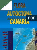 Flora Autoctona Canaria[2]