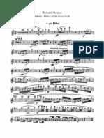 R.strauss Salome`s Dance Flute