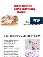 Identificación microbiana