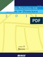 Pnad Brasil 20112