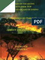 APRESENTAÇÃO 1 Florestal