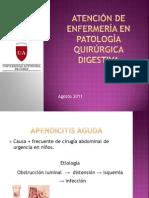 5. Pae Apendicitis y Hernias