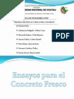 Exp_4_Pruebas Fisicas y Mecanicas Del Concreto