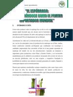 Determimantes Oferta y Demanda- Esparrago