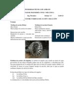 Turbinas PF.pdf