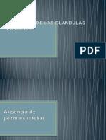 Anomalias de Las Glandulas Mamarias