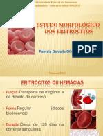 Aula 01 Estudo morfológico dos eritrócitos