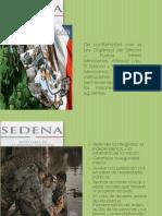 Exposicion SEDENA Final