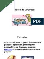 TI - EMPREENDEDORISMO - Incubadora_de_empresas_1