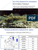 The European Market of the Pikeperch for Consumption