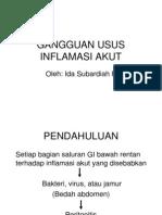 Gangguan Usus Inflamasi Akut