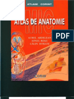 Atlas Anatomie Color