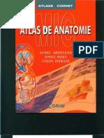 Atlas Anatomie Color