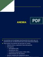 Anemia Ferropenica USJB 2012
