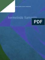 ProjMB Fiaminghi H